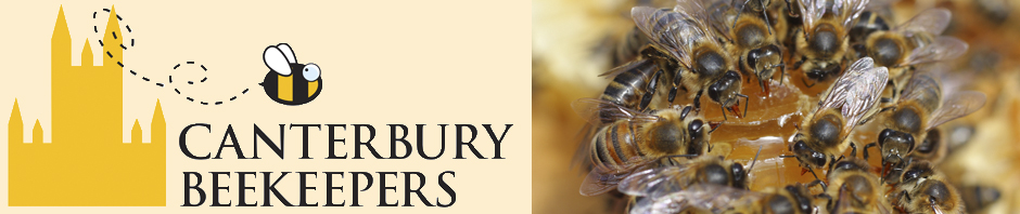 Canterbury Beekeepers